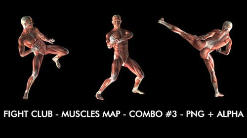Fight Club - Muscles Map - Combo #3