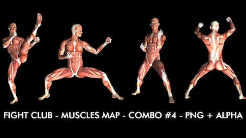 Fight Club - Muscles Map - Combo #4