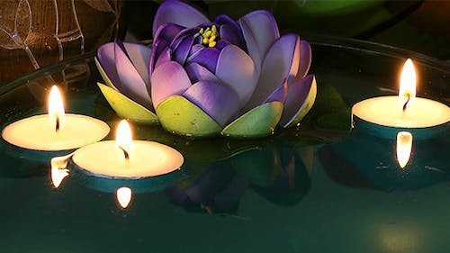 Waterlily and Candles on the Water