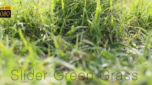 Thumbnail for Slider Green Grass