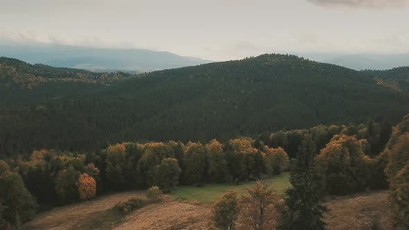 Thumbnail for Mountains Autumn Forest From Above