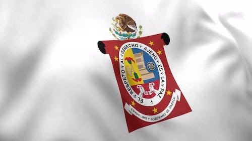 Oaxaca Flag (Mexico) - 4K