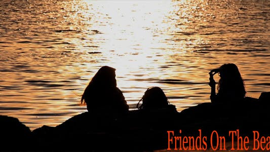 Thumbnail for Friends On The Beach