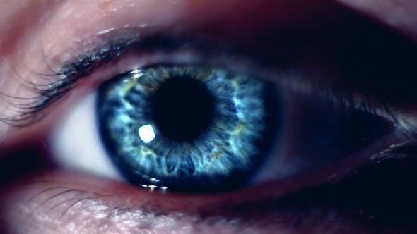 Thumbnail for Eye Macro