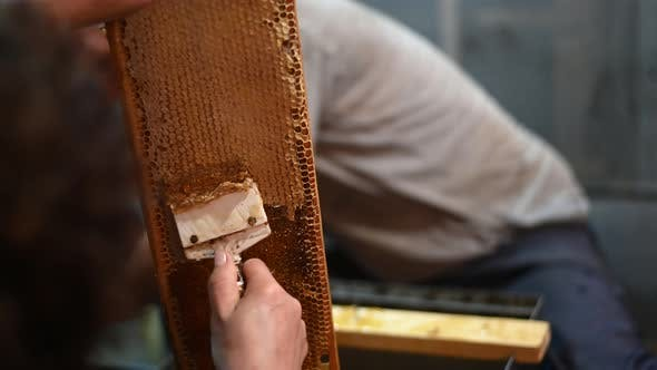 Thumbnail for Beekeeper Removes Excess Beeswax with the Scraper By Hand Preparing for Pumping Honey