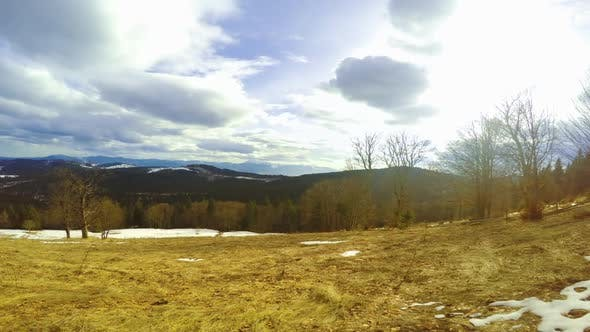 Last Snow in the Forested Mountains