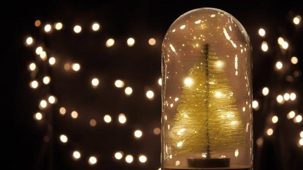 Thumbnail for Christmas Tree Lights