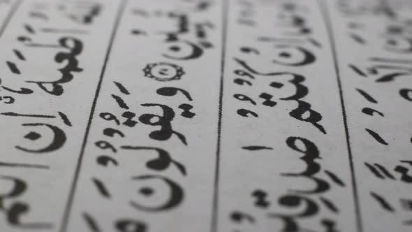 Thumbnail for Holy Quran