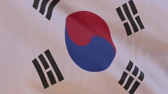 Thumbnail for South Korea Flag 4K Seamless Loop