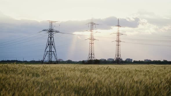 Thumbnail for Power Lines At The Wheat Field 2