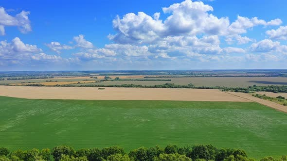 Cover Image for Aerial View Beautiful Summer Landscape