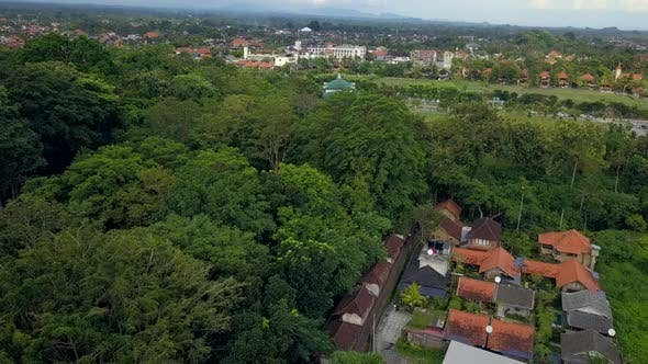 Thumbnail for Natural Park on Bali Indonesia Island Aerial