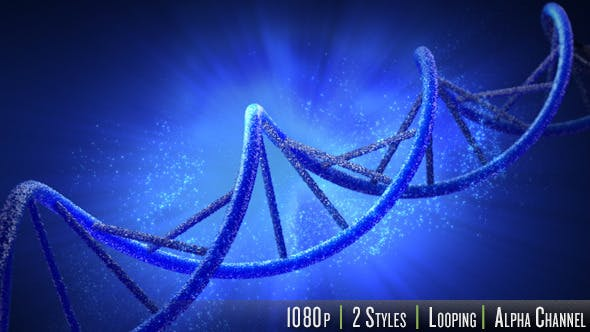 Thumbnail for Double Helix Strand of DNA