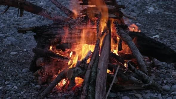 Thumbnail for Bonfire Burning Trees at Night. Bonfire Burning Brightly, Heat, Light, Camping, Big Bonfire, Close