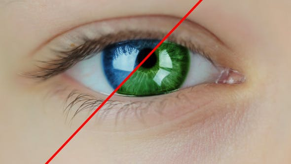 Thumbnail for Multicolored Contact Lenses