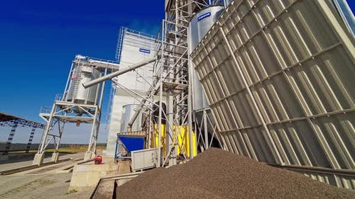 Steel Grain Silos for Grain Storage