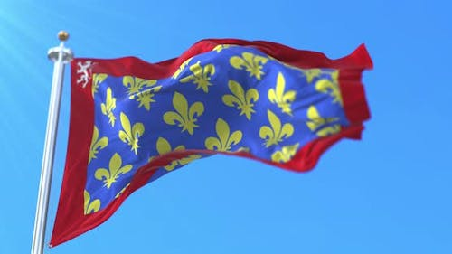 Flag of department of Sarthe in France