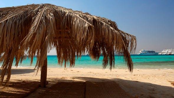 Thumbnail for Straw Beach Umbrellas At A Tropical Resort
