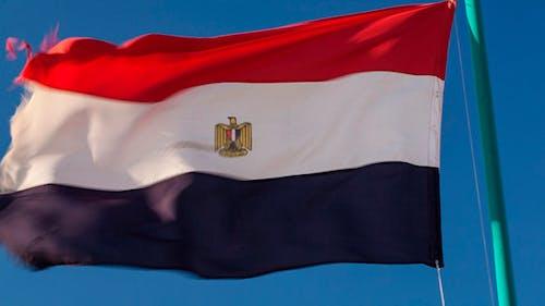 Egyptian Flag Fluttering in  Wind