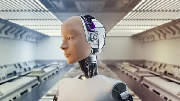 Thumbnail for Futuristic Humanoid Sci-fi Female on Spaceship