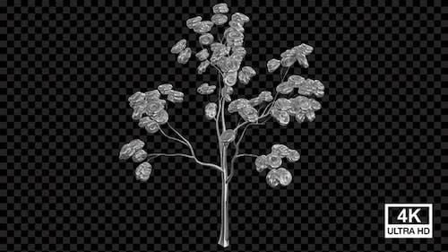 Growing Metal Torus Tree