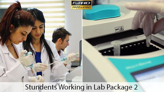 Thumbnail for Students Working in Lab 2