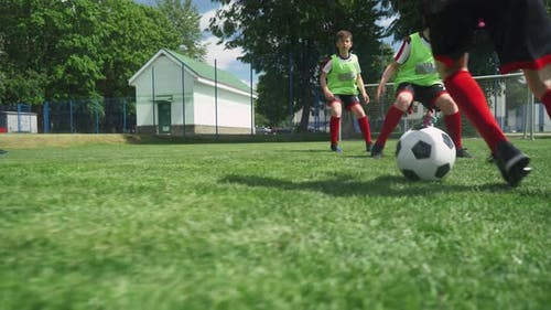 Group of Young Boys Play Soccer, Training Day on the Football Field, Boy Scores a Goal