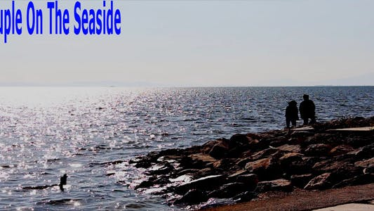 Thumbnail for Couple On The Seaside