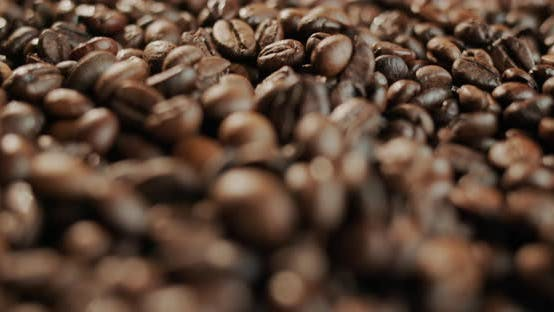 The Beans of Roasted Natural Coffee