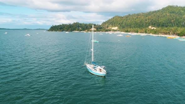 Aerial View Island Tropical Sandy Beach Palm Trees
