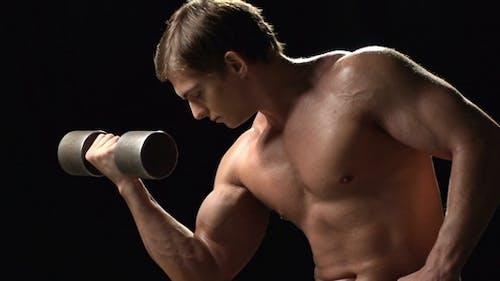 Alles über Muskeln