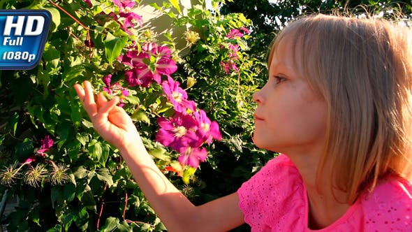Thumbnail for Girl and Tropical Flowers