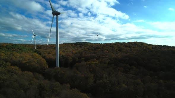 Thumbnail for Windmills Field