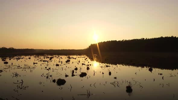 Thumbnail for Spring Sunset On Wild Swamp