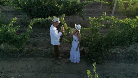 Attractive Couple Is Drinking Beverage and Raise Hands on a Field Planted with Grapes, Aerial View