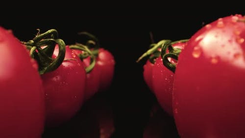 Wet red coktail tomatoes super macro close up 4k