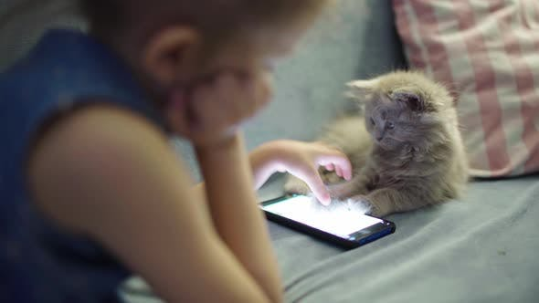 Thumbnail for Little Young Girl Child Stay Home In Room With Pet Fluffy Cute Kitten