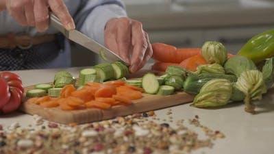 Vegan Vegetarian Meal Preparing