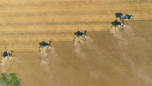 Combine Agriculture Harvesters Working in the Field. View From Above.