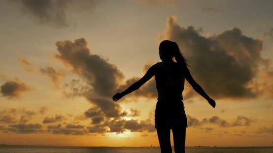 Thumbnail for Silhouette of woman with seascape in the sunset time