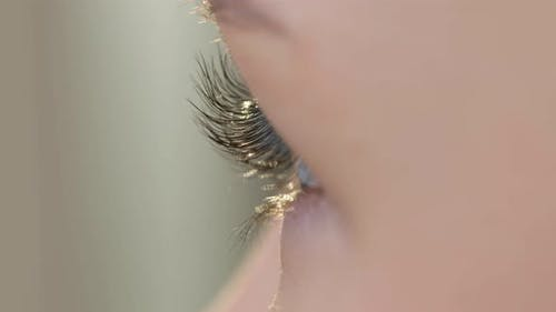 Female Eye with Beautyful Eyelashes