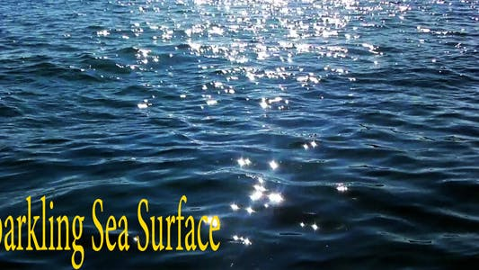 Thumbnail for Sparkling Sea Surface