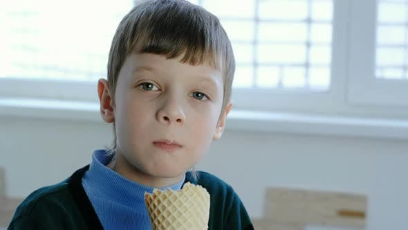 Thumbnail for Smiling Seven-year-old Boy Licks Ice Cream Standing at the Window.