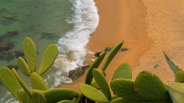Thumbnail for Turquoise Mediterranean Beach Rack Focus 2