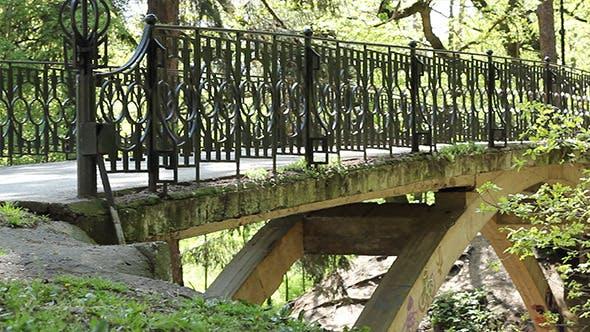 Thumbnail for Pedestrian Large Bridge in the Park