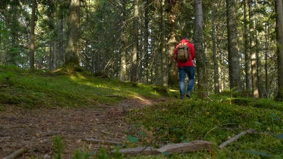 Tourist Guy with Backpack Hiking on an Adventure Trip in Natural Landscape