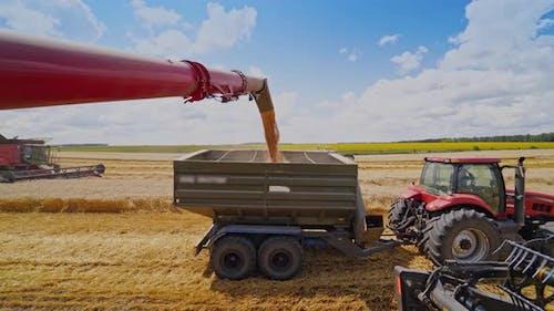 Overloading grain into tractor trailer