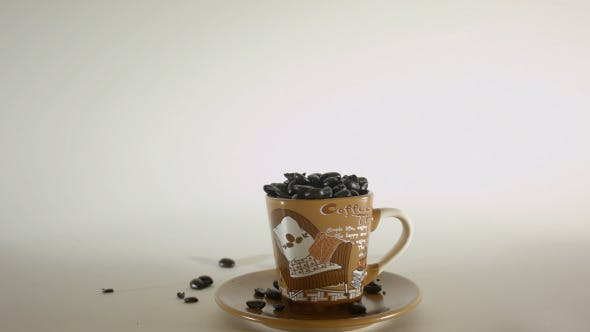 Thumbnail for Coffee Beans Poured Into Small Coffee Cup