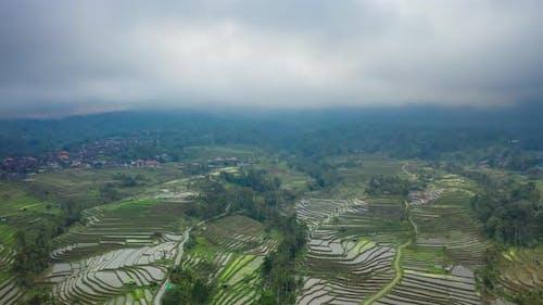 Die schönen und Dramatisch Reisfelder von Jatiluwih in Bali, Indonesien. Antenne Zeitraffer