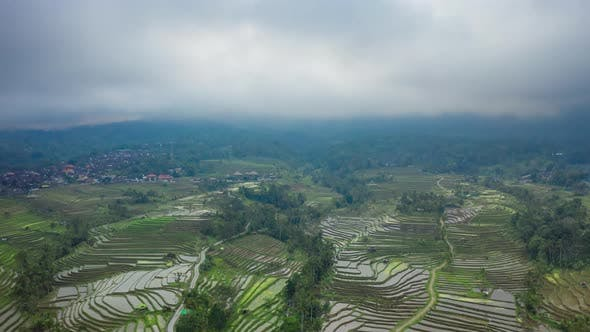 The Beautiful and Dramatic Rice Fields of Jatiluwih in Bali, Indonesia. Aerial Timelapse